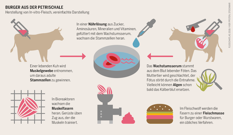 Grafik_Laborfleisch